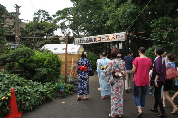 関東 ホタル 名所 2015
