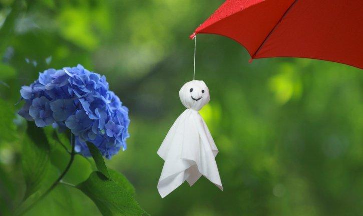 「梅雨時 画像」の画像検索結果