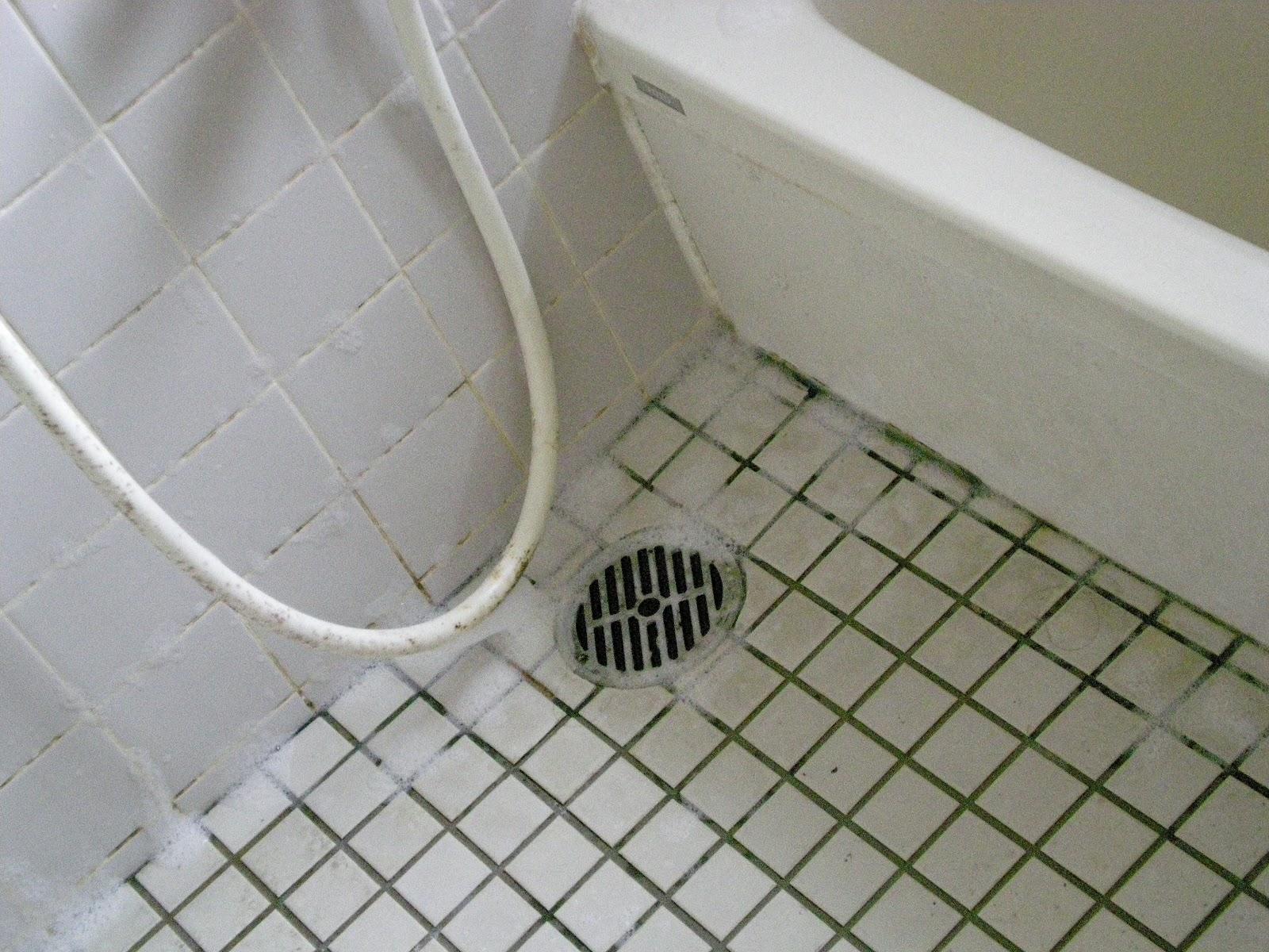 お風呂の天井のカビ取りにアルコール!掃除予防方 …